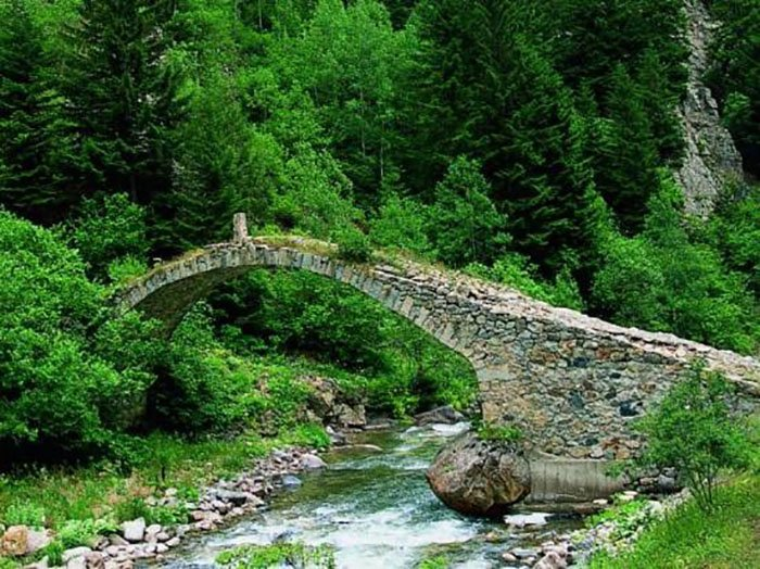 Altindere Vadisi National Park à Trabzon