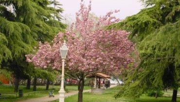 parc de Fenerbahce